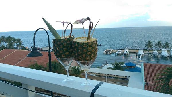 bacardi-cocktails